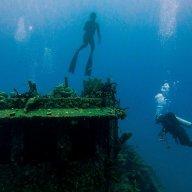 Northern Coast Diver